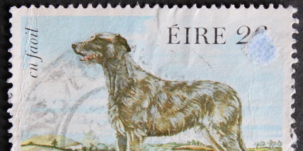 stampa-eire