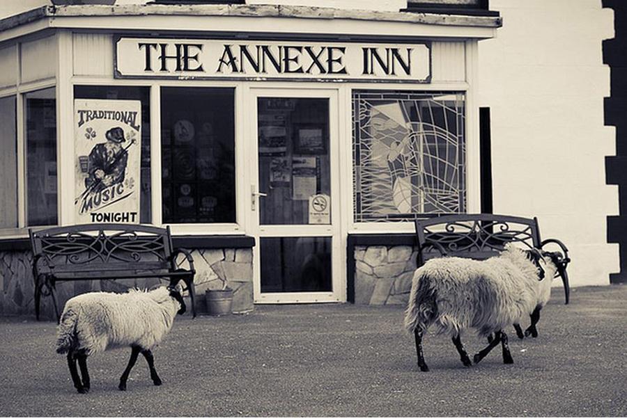 annexe-inn