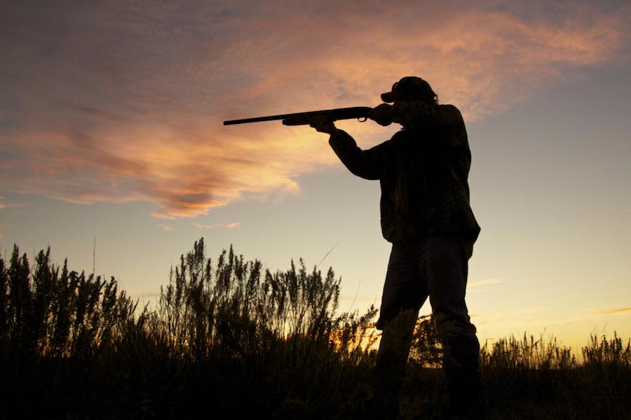 Shooting at Sunrise